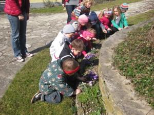 Kindergarten sucht den Frühling