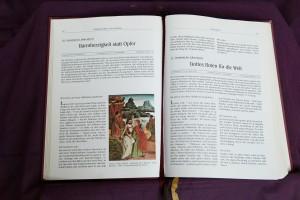 Bibelviolett (1)