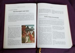 Bibelviolett-zug